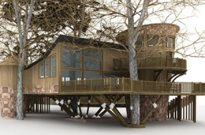 New Forest Tree House Study Centre, www.cet.org.uk