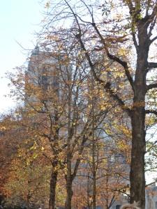 Notre Dame in autumn.