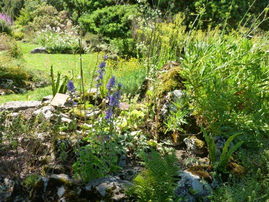Botanical Gardens, Geneva.