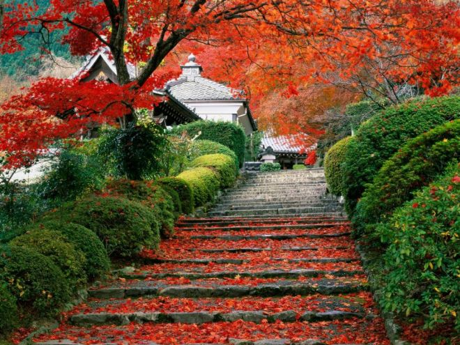 Steps leading to a temple, from gardendesigneye.com