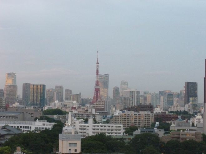 Day 2, still raining, but you can see Tokyo TV tower.