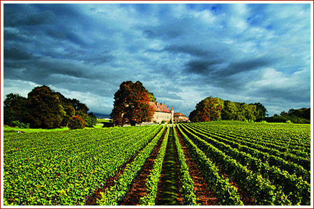 Chateau Allaman in Canton Vaud, from liens-du-vin.ch