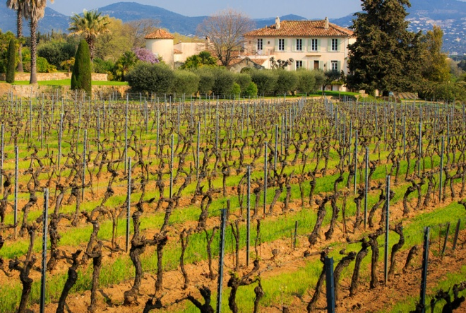 Chateau Barbeyrolles, near Saint Tropez. From barbeyrolles.com