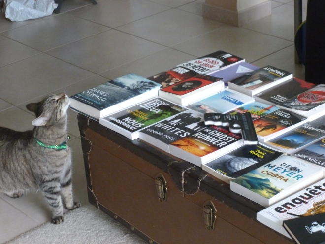 Even my cat is astounded by the amount of books I bought...
