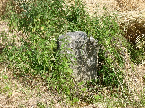 This isn't art: it's the old borderstone, overgrown by weeds. Long may it lie forgotten!