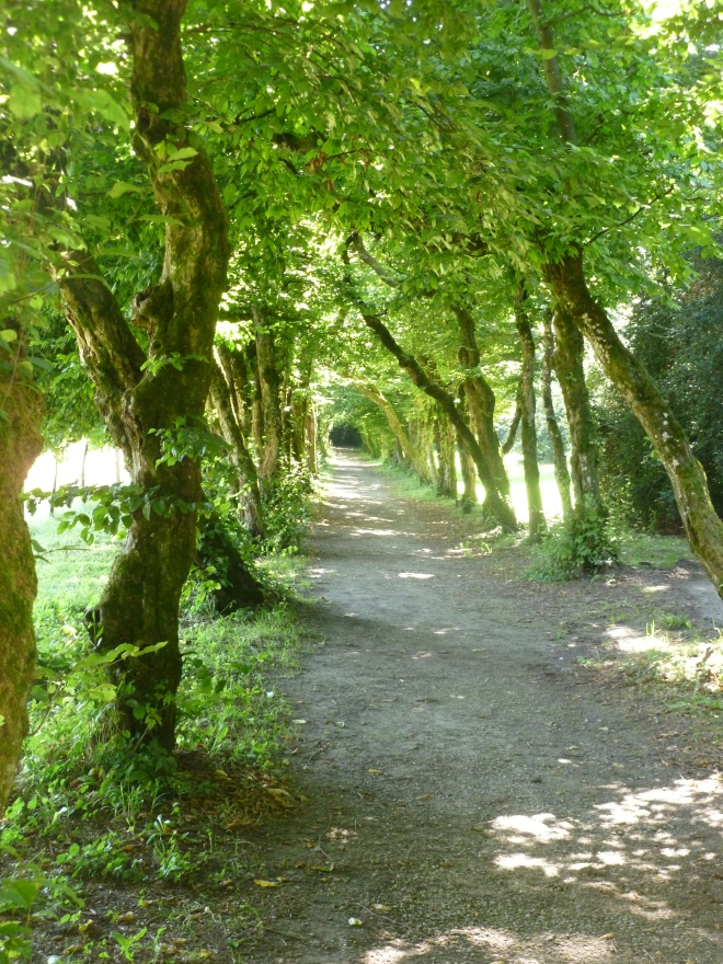 Voltaire's shady path, lined with trees planted by himself.